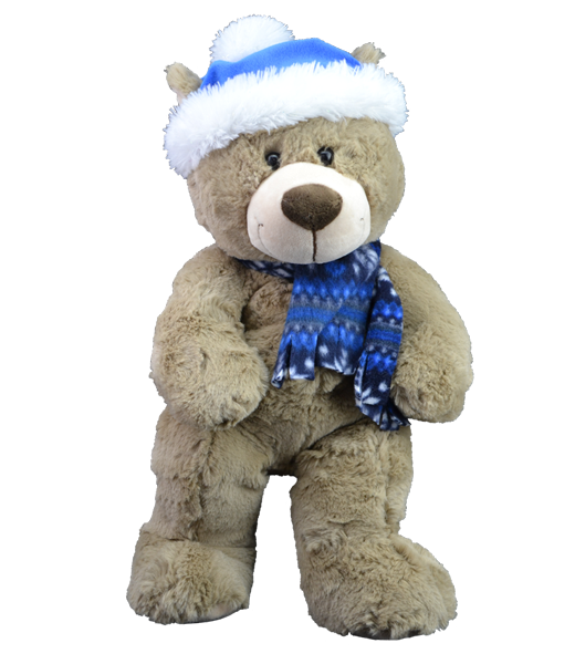 Teddy bear with a hat and scarf