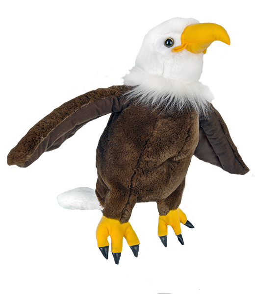 """Liberty"" the Bald Eagle"